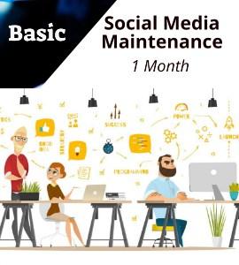 social-basic-1month