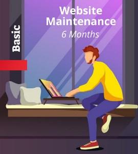 web-basic-6-months