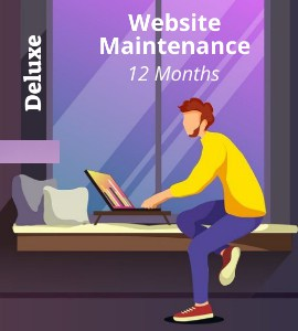 web-deluxe-12-months